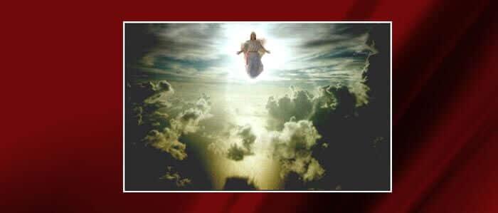 33rd Sunday in Ordinary Time – Parish Bulletin